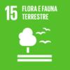 15goals-flora-e-fauna-terrestre