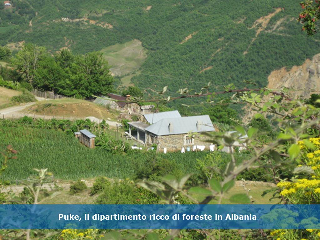 albania_04dx-gra