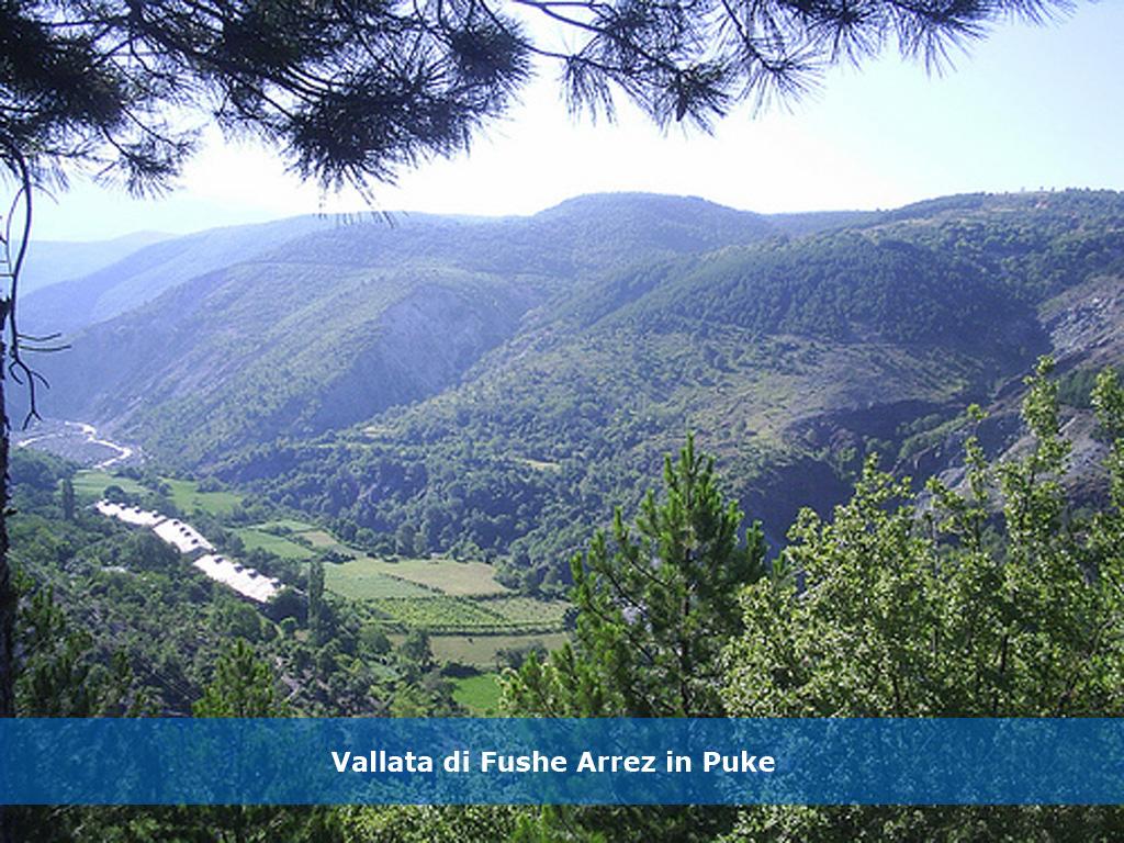 albania_05dx-gra